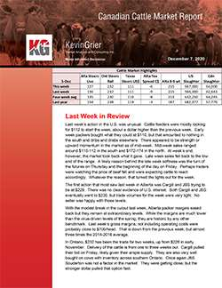Canadian Cattle Market Report
